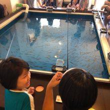 沖繩釣魚Cafe